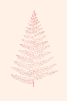 Ilustrare Botanica Minimalistica Rouge