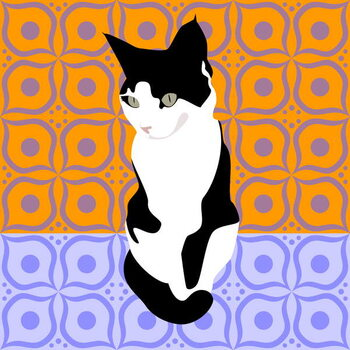 Cat on Morrocan Tiles Reproducere