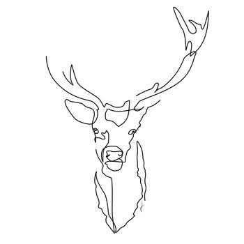 Ilustrare Cervo