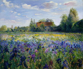 Evening at the Iris Field Reproducere