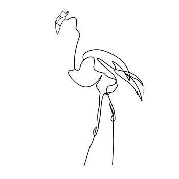 Ilustrare Fuoco