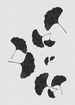 Ilustrare Ginkgo Leaf Black & White I