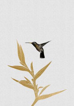 Ilustrare Hummingbird & Flower II