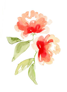 Ilustrare Kailey abstract flower
