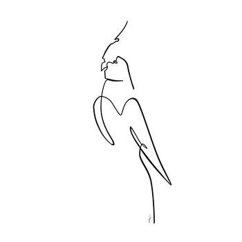 Ilustrare Papagalo