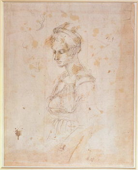 W.41 Sketch of a woman Reproducere