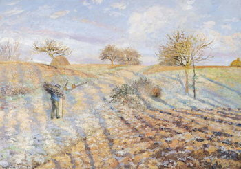 White Frost, 1873 Reproducere