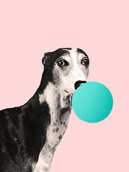 Ilustrare bubblegumdog