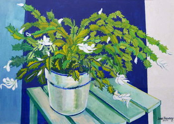 Christmas Cactus,2000 Reproducere
