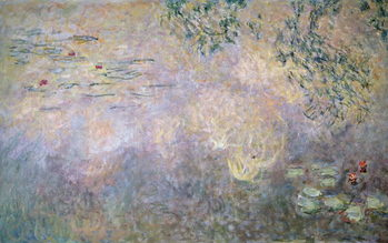 Waterlilies , 1910 Reproducere