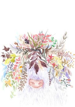Ilustracija Bull