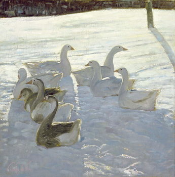 Geese Against the Light Reprodukcija
