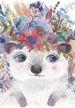 Ilustracija Hedgehog