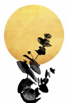 Ilustracija La Vie En Rose