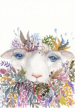 Ilustracija Sheep