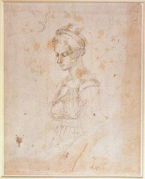 W.41 Sketch of a woman Reprodukcija