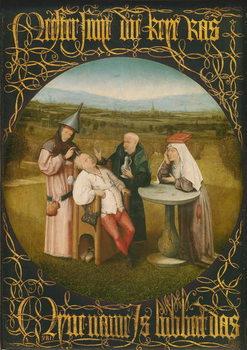 The Cure of Folly, c.1494 Reprodukcija