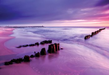 Fotomural Beach Purple Sunset Sea