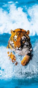 Fotomurale BENGAL TIGER