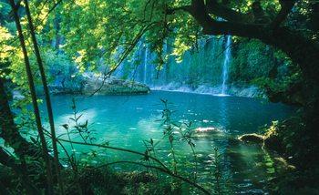 Fotomural Bosque tropical de la laguna de la cascada