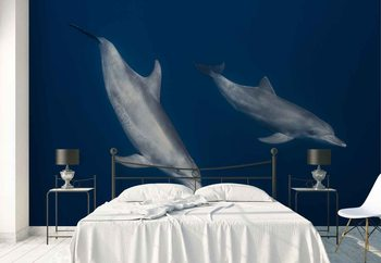 Fotomural Bottlenose Dolphins