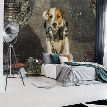 Fotomural Dog Dj