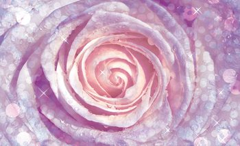 Fotomurale  Flores Rosa Naturaleza