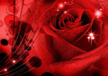 Fotomurale  Flower Rose Abstract