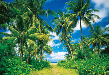 Fotomurale ISLAND IN THE SUN