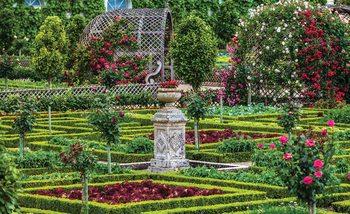 Fotomurale  Jardin de rosas