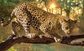 Fotomural  Leopardo