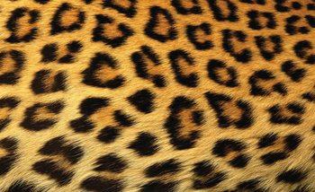 Fotomurale  Leopardo