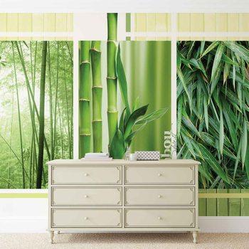 Fotomural  Naturaleza del bosque de bambo