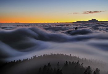 Fotomural  Ocean Of Clouds