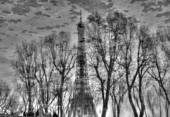 Fotomurale  Reflection