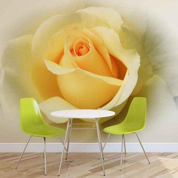 Fotomural Rosa amarilla