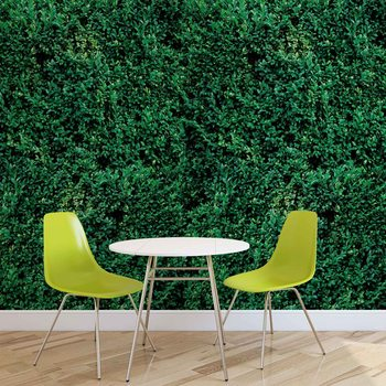Fotomural Textura de hierba