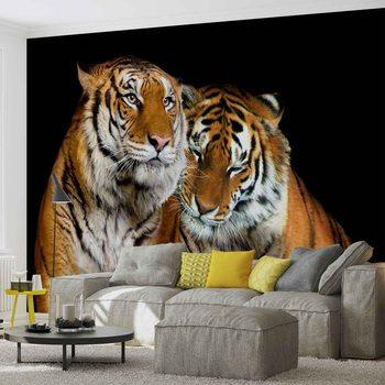 Fotomural  Tigres