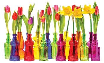 Fotomural Tulipanes en botellas