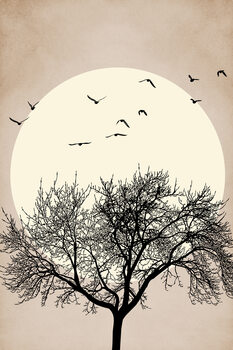 Autumn Dreamers Fototapet