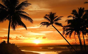 Beach Tropical Sunset Palms Fototapet