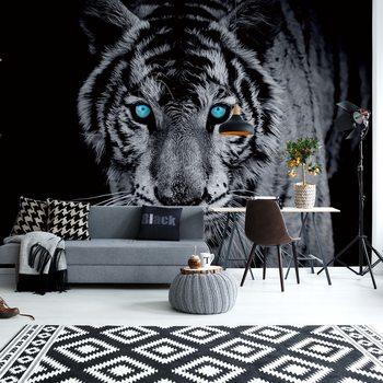 Black And White Tiger Blue Eyes Fototapet