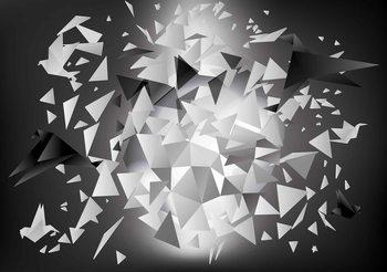 Explosion Birds Abstract Fototapet