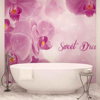 Flowers Orchids Pink Fototapet