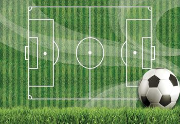 Football Pitch Fototapet