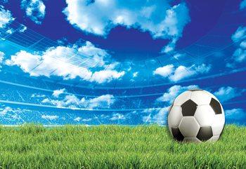 Football Stadium Blue Sky Fototapet