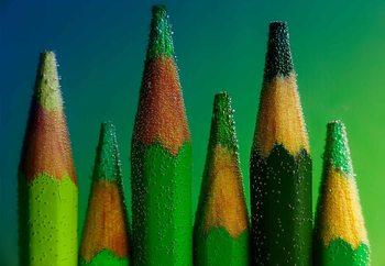 Green Fototapet