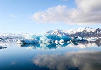 Iceberg Reflection Fototapet