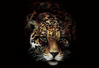 Jaguar Fototapet