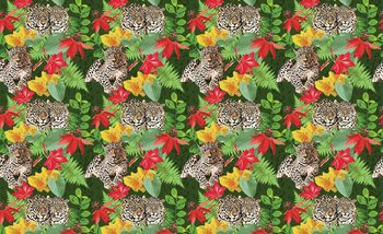 Jungle Cheetah Fototapet